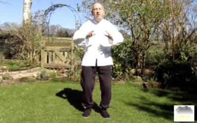 TAI CHI & CHI KUNG exercises to do at home
