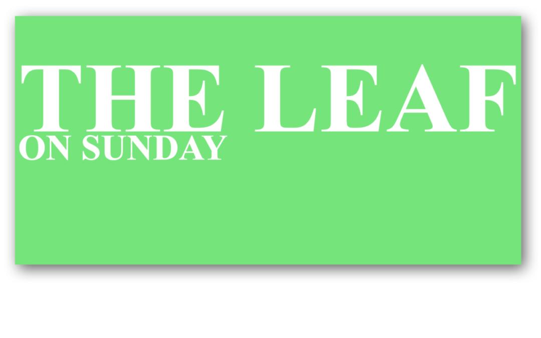 THE LEAF on Sunday