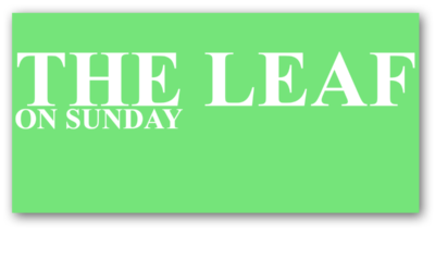 THE LEAF on Sunday
