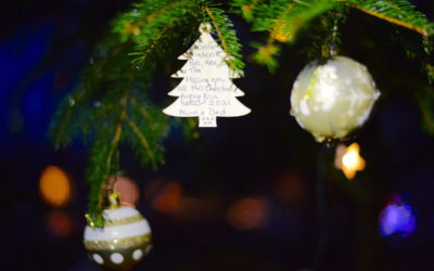 A Christmas Tree of thoughts, hopes and remembrances