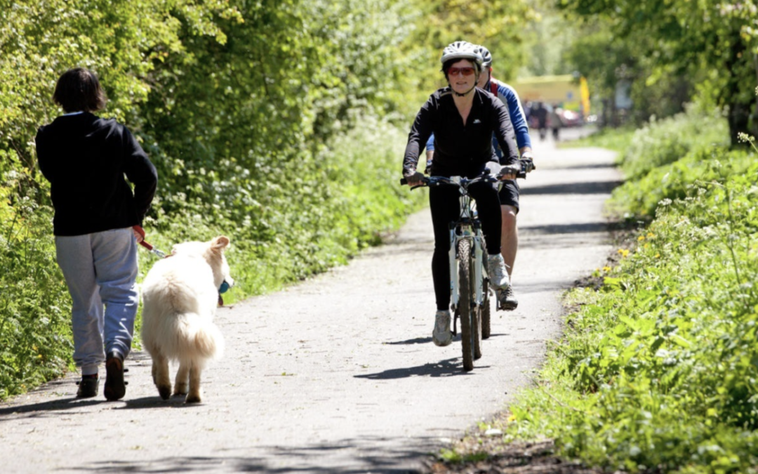 East Sussex Cycling and Walking route plans – Consultation ends 11th December.